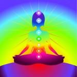 Yoga Teacher Training: Introduction to the Yogic Energy Body