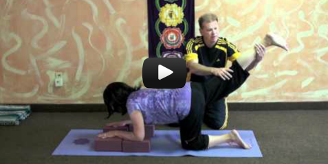 Yoga Teacher Training Videos
